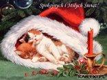 Spokojnych i Miłych Świąt!