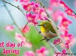 Spring...!