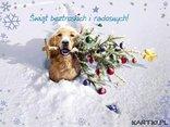 Świąt beztroskich i radosnych!