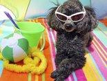 Udanego słonecznego weekendu!