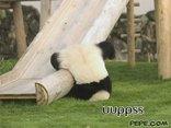 uuppss