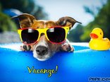 Vacanze!