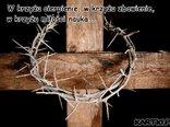 W krzyżu cierpienie, w krzyżu zbawienie, w krzyżu miłości nauka...