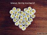 Wiesz, że Cię Kocham?