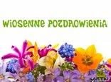 wiosenne kwiatki i pozdrowienia