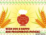 Wish you a happy and prosperous Pongal!