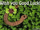 Wish you Good Luck!