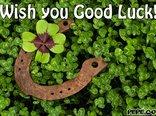 Wish you Good Luck!