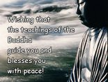 Wishing that  the teachings of the Buddha guide you and blesses you with peace!