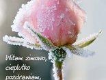 Witam zimowo, cieplutko pozdrawiam, na miły dzionek różyczkę zostawiam!