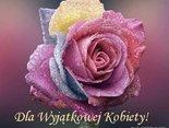 Wyjątkowa róża dla Wyjątkowej Kobiety!