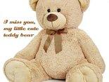 You are my teddy bear