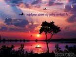 Z zachodem słońca wszystko się zmienia, budzą się sny, budzą się marzenia...
