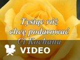 Tysiąc róż chcę Ci podarować Kochana...
