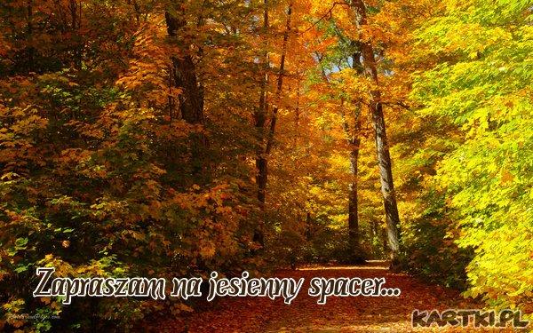 Zapraszam na jesienny spacer