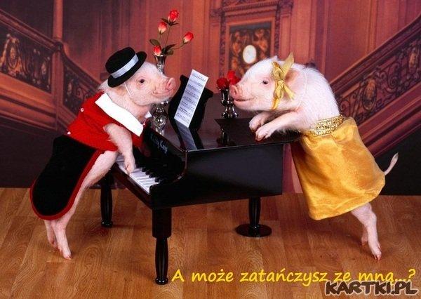 A może zatańczysz ze mną ?