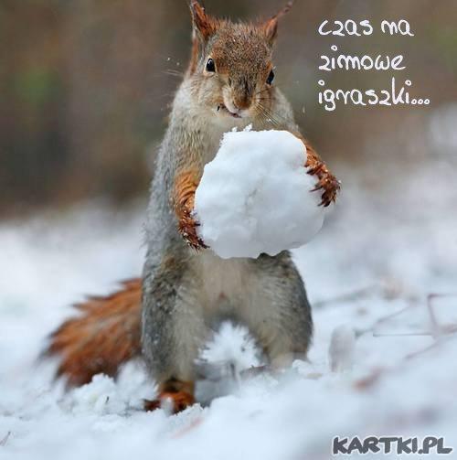 cieszmy się zimą...