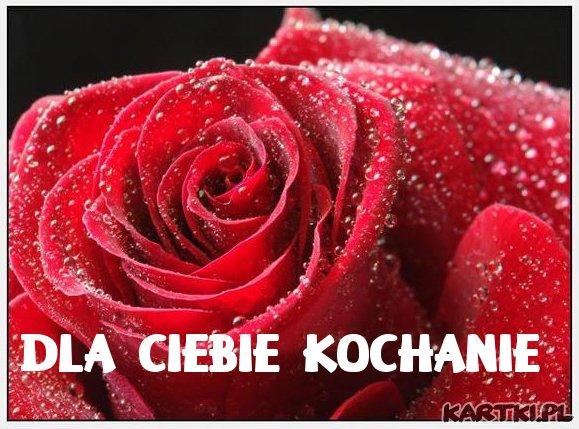 Dla Ciebie kochanie