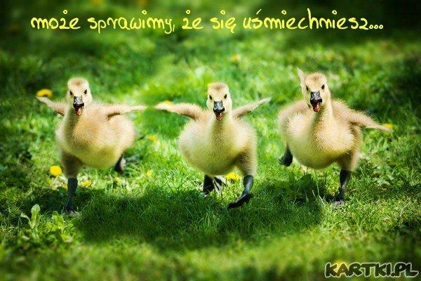 dla Ciebie śpiewamy i tańczymy, więc uśmiechnij się i nie miej takiej poważnej miny