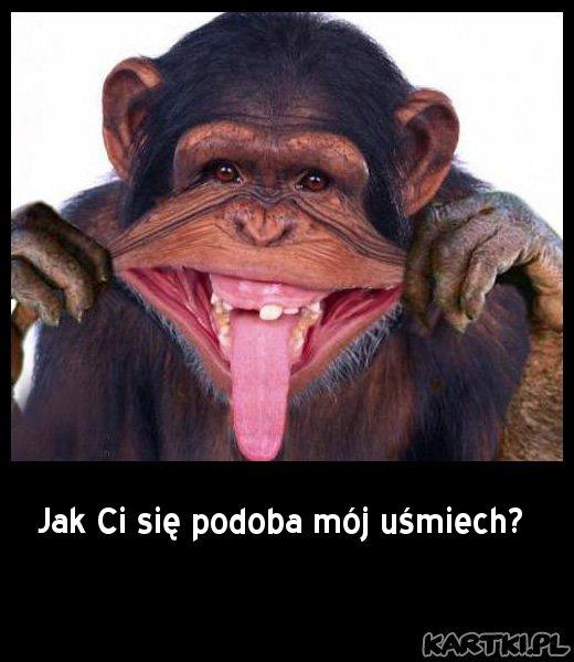 Jak Ci się podoba mój uśmiech