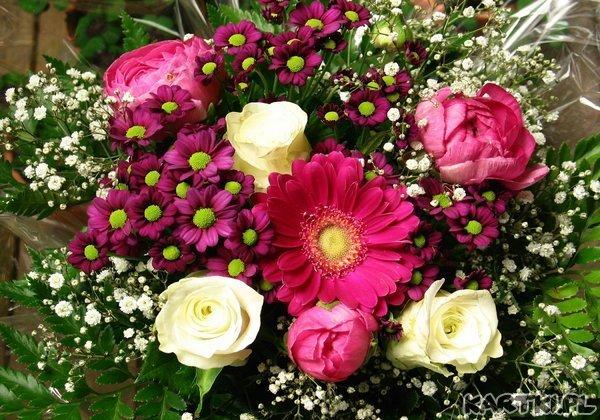 Kwiatuszki dla Ciebie