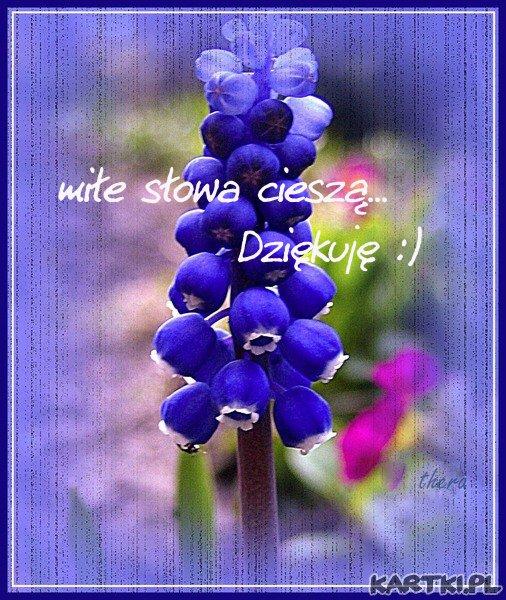 miłe słowa cieszą...Dziękuję :)
