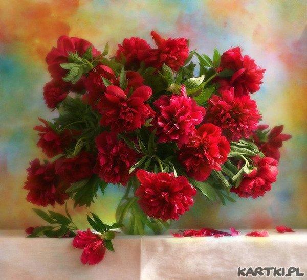 Mowa kwiatow: Piwonia - otaczam Cię opieką.