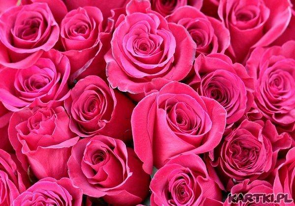 Najpiękniejsze różyczki - dla Ciebie