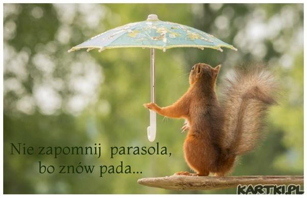 Nie zapomnij parasola,bo znów pada