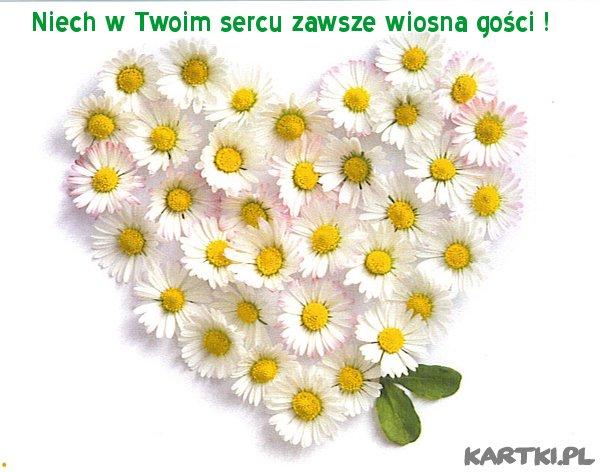 Niech w Twoim sercu zawsze wiosna gości !