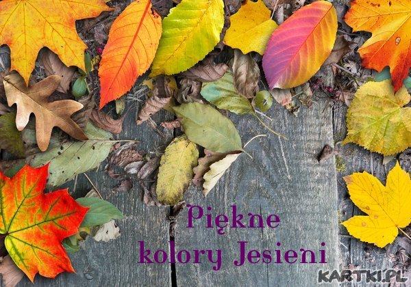 Piękne kolory Jesieni