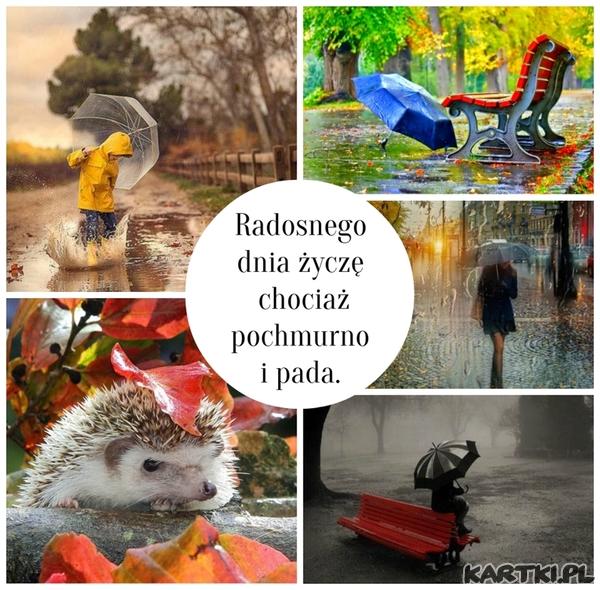 Radosnego dnia życzę chociaż pochmurno i pada