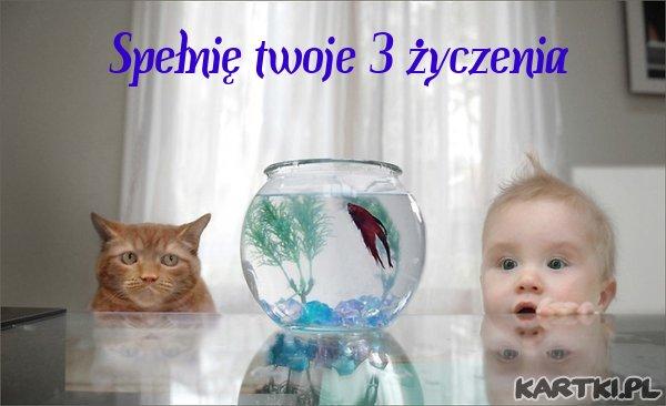 Spełnię twoje 3 życzenia
