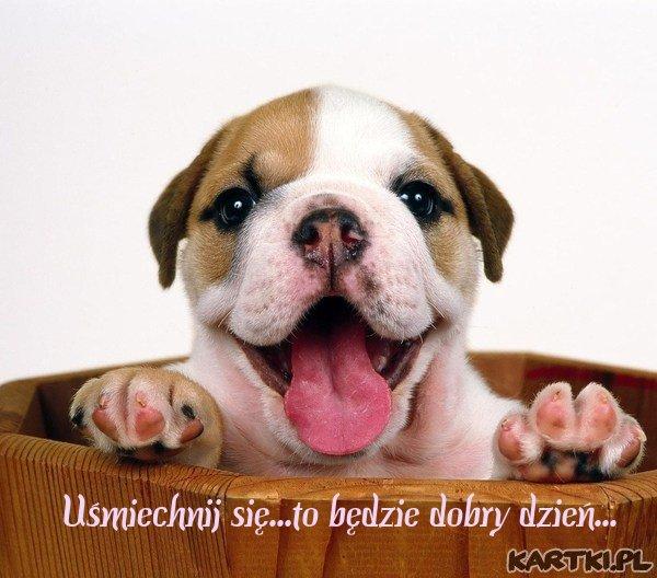 Uśmiechnij się...to będzie dobry dzień...
