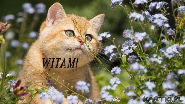 WITAM!**