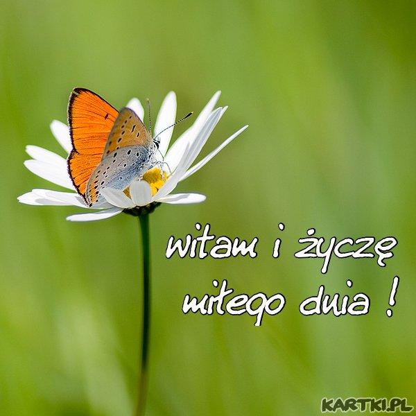 witam i życzę miłego dnia...
