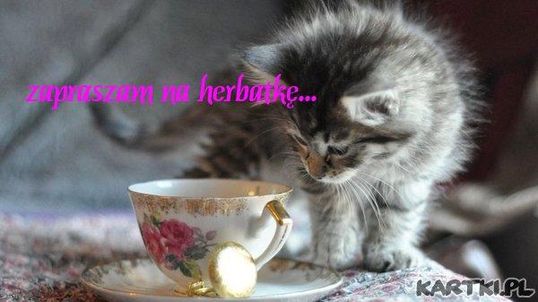 zapraszam na herbatkę...