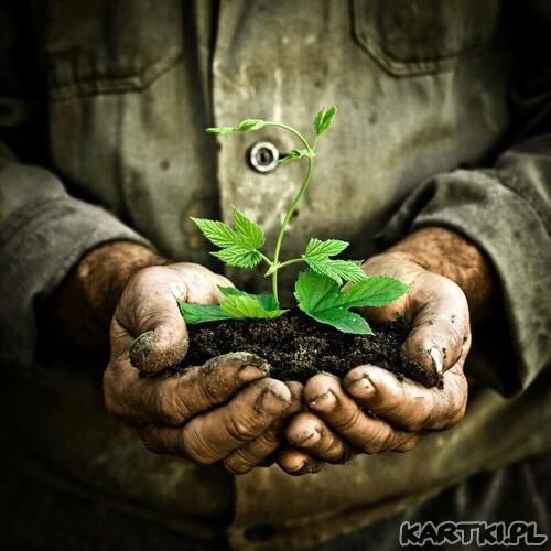 Ziemia=Życie