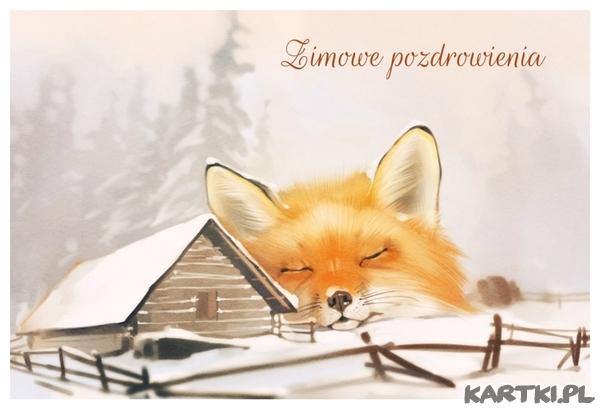 Zimowe pozdrowienia