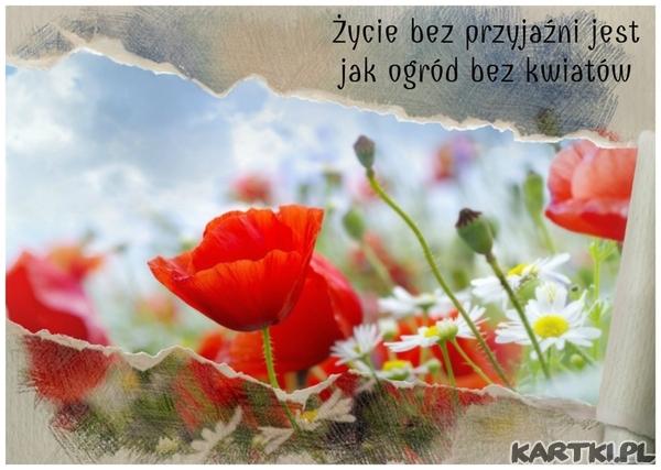 Życie bez przyjaźni jest jak ogród bez kwiatów
