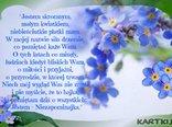 15 maja obchodzony jest jako Dzień Polskiej Niezapominajki skromnego kwiatka stanowiącego ozdobę naszych łąk, pól i ogrodów.