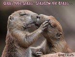 całuj mnie,całuj...całusów nie żałuj...