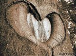 ...co to jest miłość?