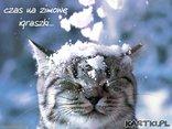 czas na zimowe igraszki...
