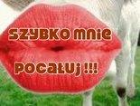 Daję Ci buziaka, ale ty też...
