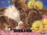 DOBRANOC**