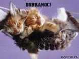 DOBRANOC!**