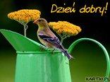 Dzień dobry ! Miłego dnia życzę!