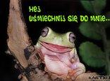 Hej! Uśmiechnij się do mnie...