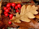 jesiennie pozdrawiam